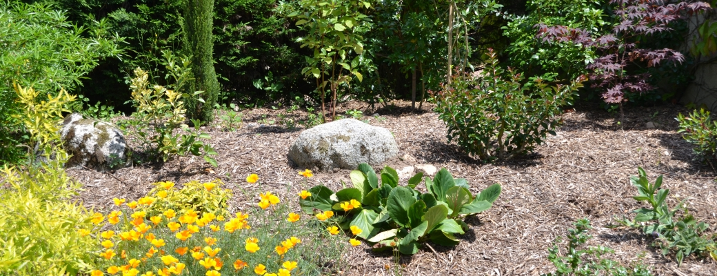 Jardin paysager 2